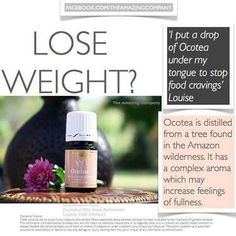 Lose weight and help sugar cravings with Ocotea! www.thelivingdrop.com for more oil info!