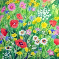 Dutch field margin flowers | The Art of Jane Tomlinson