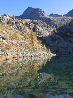 Lago Mognola Lacs, Clean Beach, Alleyway, Palm Trees, Switzerland, Camper, Exotic, Paradise, Hiking