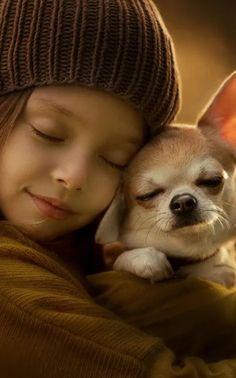 A Dog Lover  #Read #Helllowdogblog #Find out #DogLoverBlog