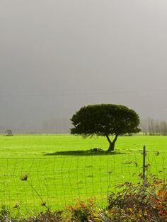 il sole incontra il maltempo, nel Sulcis-Iglesiente, Sardegna - sun meets thunderstorm, in Southwest Sardinia - Sonne trifft Schlechtwetterfront, im Südwesten Sardiniens