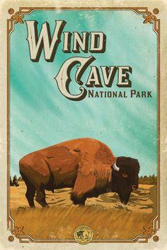 New Vintage Travel Posters Usa Art Deco National Parks Ideas National Park Posters, National Parks, Nationalparks Usa, Old Posters, Voyage Usa, Wind Cave, Poster Art, Poster Ideas, Park Art