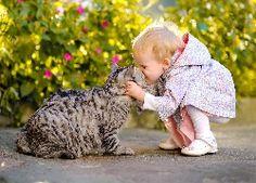 Kot, Dziecko, Przytulanie, Pocałunek