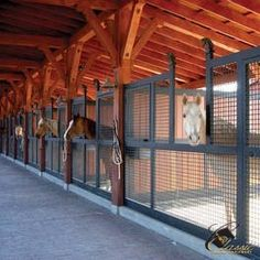 Man, I love welded wire stall fronts!  So much more air circulation, plus you can see the horses without opening the doors.