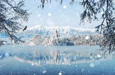 paisajes naturales de otoño y nieve | 12 Fotos de paisajes de invierno