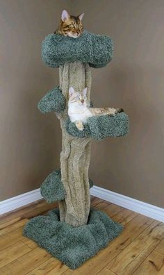 Our Premier Large Cat Play tree is a unique cat tree that actually looks like a REAL tree! This amazing piece of cat furniture is also a unique piece of art, and provides a great escape for your cat! All of our cat furniture comes Minutes easy assembly Cool Cat Trees, Diy Cat Tree, Cool Cats, Cat Tree Plans, Large Cat Tree, Cat House Diy, Cat Activity, Cat Towers, Cat Playground