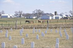 Amish cemeteries are solemn refuges where souls die as they live: quietly, unassuming and of the earth, returning to the soil in a cycle that repeats itself as predictably as the sun rises or the summer breezes softly caress. ...