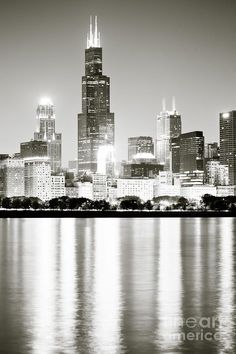 2033528790fb Chicago Skyline At Night Canvas Print   Canvas Art by Paul Velgos