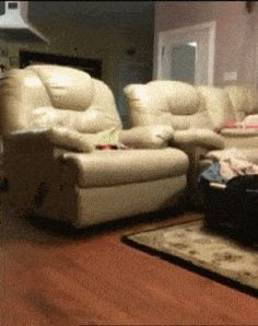 21 Best GIFs Of All Time Of The Week #195