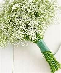 light green and lavendar weddings - Bing Images