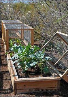 Great raised garden idea...and the covers will keep critters out! #urbangardening