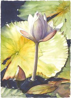 Mystic Pond #1 by Barbara Groenteman Watercolor ~  x
