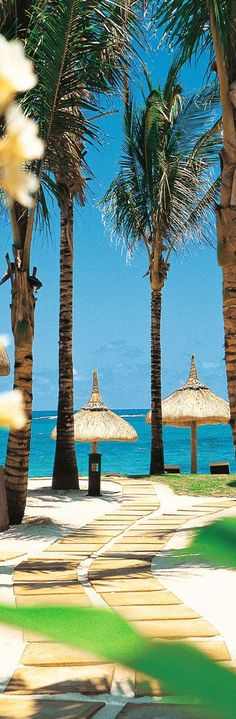 The Constance Belle Mare Plage...Mauritius