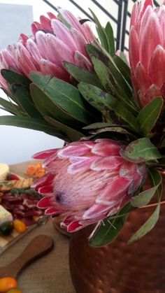proteas Rare Flowers, Exotic Flowers, Beautiful Flowers, Protea Art, Protea Flower, Australian Native Flowers, Tropical Plants, Calla Lily, Amazing Gardens