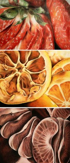 AP Studio Art project by Sucha Chantaprasopsuk of Reavis High School - I like that these are extreme close up of fruit so that it has so much intricate detail and realistic if you were to zoom in that far on fruit. Ap Drawing, Food Drawing, Colour Drawing, Texture Drawing, Juan Sanchez Cotan, Natural Form Art, Natural Forms Gcse, High School Art Projects, Fruits Drawing