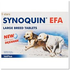 Synoquin 5031812522195 Tasty Large Breed