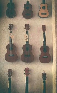 I just really want a ukulele okay? ...