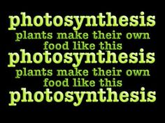 photosynthesis song: chloroplasts and chlorophyll - YouTube For FIFTH grade. Activity: write down the four things plants need to do photosynthesis. Lead Topic: what is photosynthesis.