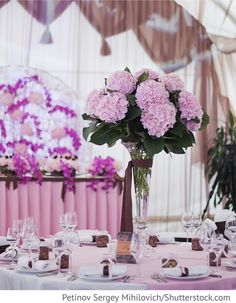 Dekoration Location mit Hortensien und Orchideen für Hochzeit