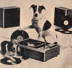 Dogs Love Records