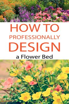 Learn how to design your flower bed professionally! Garden Fun, Garden Ideas, Garden Plants, Florida Landscaping, Landscaping Ideas, Outdoor Projects, Garden Projects, Different Plants, Yards