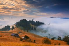 Dream by Anton Petrus on 500px