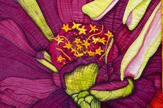 Detail of Zinnia by Velda Newman
