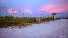 After Sunset on Honeymoon Island Florida by Mikell Herrick
