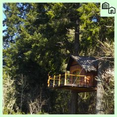 Tree House Island: A New Vacation Spot Between Portland and Seattle | Push For Good on GOOD