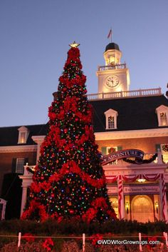 Magic Kingdom - Christmas #disney #wdw