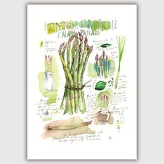 Bunch of asparagus Asparagus recipe poster by lucileskitchen