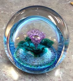 Selkirk Glass Paperweight Handmade In Scotland Signed THISTLE with Box