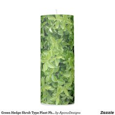 Shop Green Hedge Shrub Type Plant Photograph Candle created by AponxDesigns. Types Of Plants, Hedges, Shades Of Green, Pillar Candles, Green Colors, Shrubs, Candle Holders, Photograph, Lights