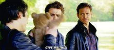 they're fighting over a teddy bear hahaha