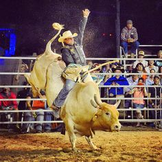 There's more to Julia Creek than the Durt n Dust Triathlon! The fun truly starts after dark with outdoor concerts, horse races and bullrides!