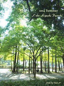 道のりを記憶に残して: 神戸東遊園地にて/2014年夏の昼下がり