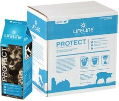 Lifeline Protect Colostrum Supplement for Newborn Beef Calf 6 ct multipack (6 lbs total)