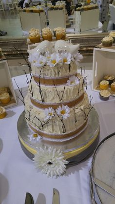 First wedding cake. Good thing for me it was rustic.