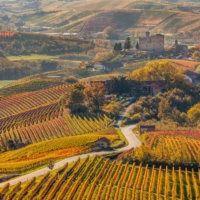 Steven Zoernack: Ten Most Beautiful Vineyards and Wine Regions in Europe - Tripelle