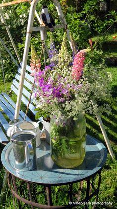 Vihervaara Green Gables, Plants, Plant, Planets