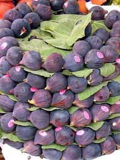 Figs for sale by Praziquantel