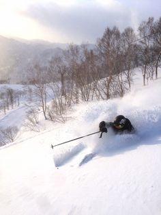 Mt.Naeba Niigata Pref. Japan