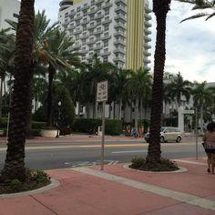 Royal Palm South Beach Miami, a Tribute Portfolio Resort - 66 ...