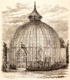 Bent Wood Conservatory from the 1878 Exposition Universelle (1882 Engraving)
