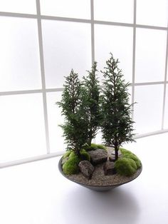 Japanese Gardens Modern bonsai by Kenji Kobayask  This is just lovely! So much more creative than the omnipresent green/gray ceramic tray.