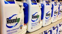 Cancer-stricken plaintiffs sue Monsanto; claim it purposely mislabeled co-formulants in Roundup to conceal their damaging effects