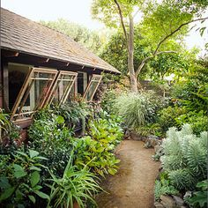 Camellias, hydrangeas, and grasses flank the path