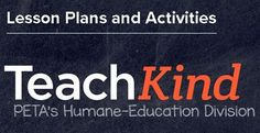 Check out our searchable database of lesson plans! #teachkindness #planningperiod #freelessonplans