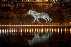 Kiki Smith Wolf's Dream. Piazza Tevere, Rome.