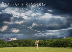 Documentary: Peaceable Kingdom: The Journey Home ~`*`~ This incredibly beautiful documentary was produced in 2004 by Tribe of Heart. It endeavors to show how some farmers have come to refuse to kill animals and have instead converted to veganism as a more joyous and fulfilling way of life.
